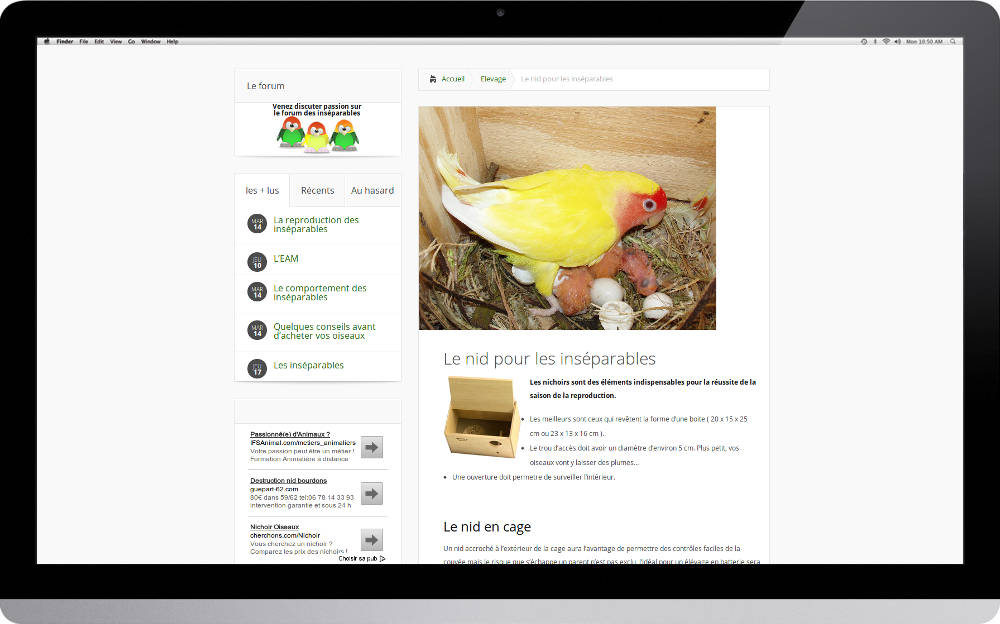 creation-site-internet-animaux_002